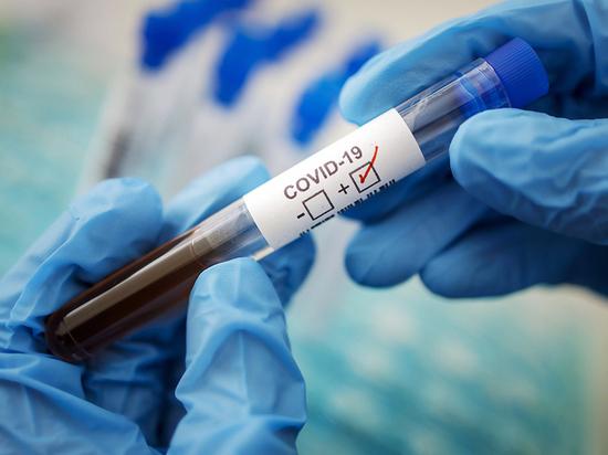 В Дагестане проведено более 1 млн тестов на коронавирус