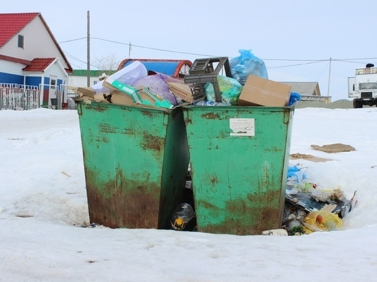 Коммунальщики ЯНАО стали вручную выгребать мусор из баков из-за морозов