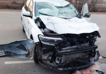 Бесконтрольный выпас животных в Астраханской области нередко становится причиной трагических происшествий на дорогах