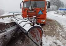 Снегоуборщик столкнулся с автовозом у границы с Эстонией