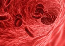 Названы эффективные способы профилактики тромбоза