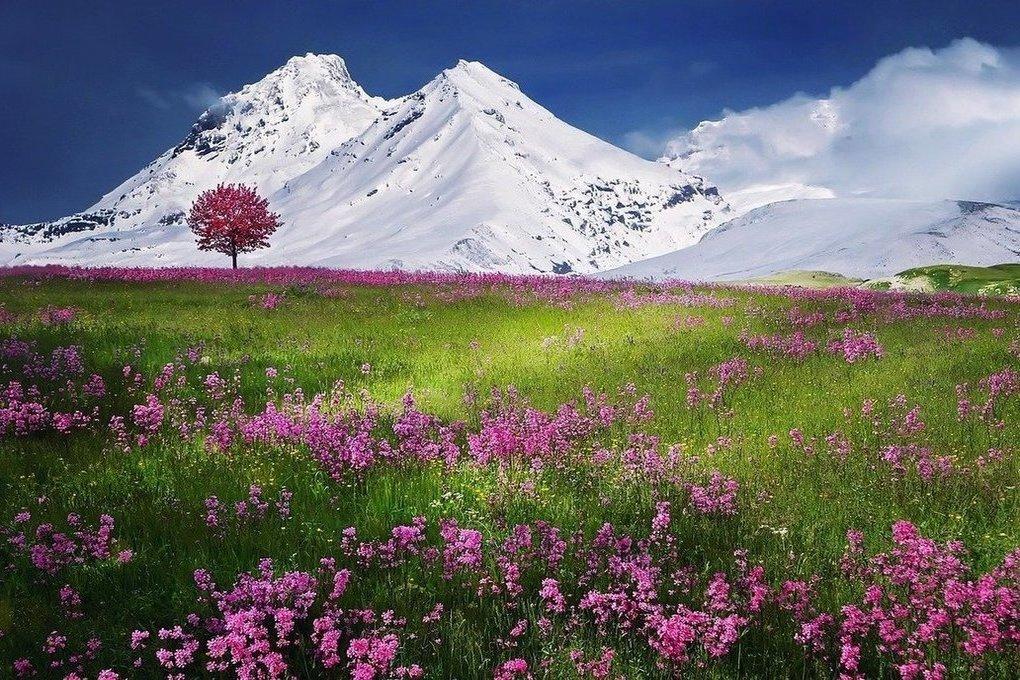 В Альпах треснувшая гора Хохфогель может развалиться