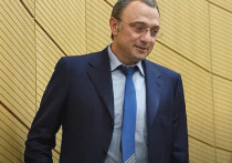 Стал известен самый разбогатевший в 2020 году российский миллиардер