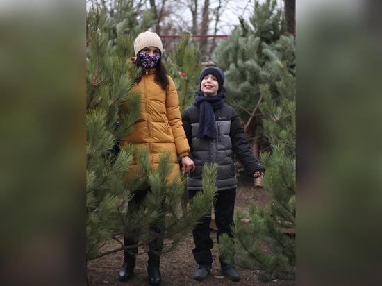 «Дети в восторге!»: донские семьи получили в подарок главный символ Нового года