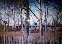 Жители села Репьево, Тогучинского района бьют тревогу
