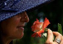 Переболевшие коронавирусом люди начинают чувствовать несуществующие запахи