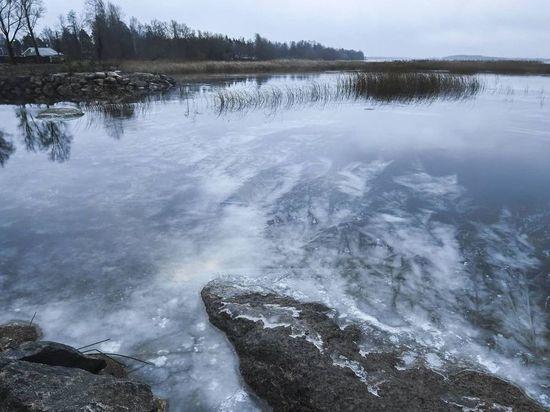 Дрозденко удивил подписчиков снимками ледяных узоров