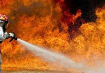 По данным МЧС Алтайского края, сообщение о возгорании в одном из производственных зданий поступило диспетчеру в 14