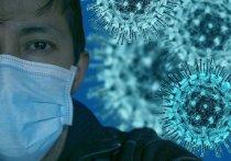 По данным на 29 декабря, число инфицированных в крае составляет 32 488 человек, из которых 28 698 уже здоровы