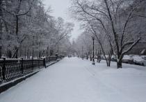 Мощная волна холодов до -45 градусов придет в Новосибирск на новогодних каникулах