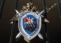 Бывшего директора «Гусинобродского кирпичного завода» будут судить за долги по налогам на 12 млн рублей