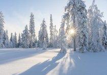 Синоптики предупредили кузбассовцев о холодном антициклоне в январе