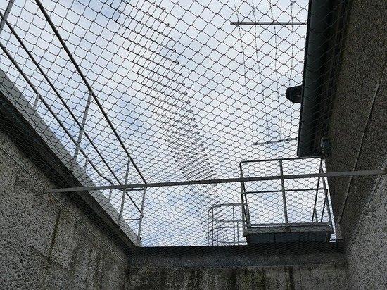 За смертельное ДТП в Казани арестовали экс-сотрудника следкома