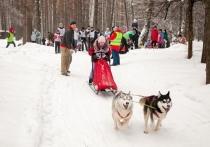 19 декабря состоялись «горячие соревнования» среди юных спортсменов «Детские старты»