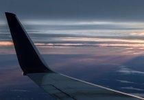 """Летевший из Симферополя в Москву самолет A-321 с пассажирами совершил экстренную посадку в аэропорту """"Шереметьево"""""""