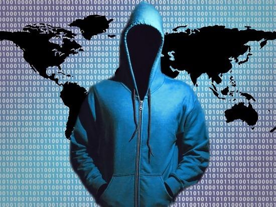 Власти рассказали, что делают и что планируется для борьбы с мошенниками и кибератаками в Алтайском крае