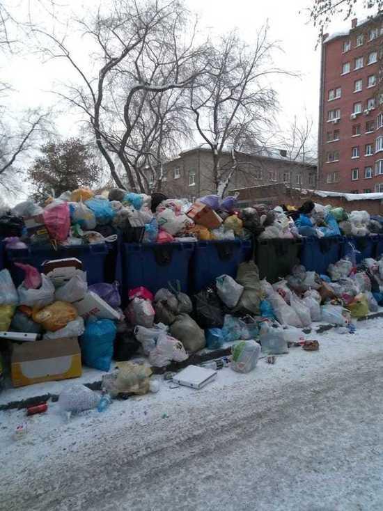 Мусор с контейнерных площадок не вывозят в Новосибирске