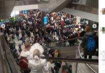 В столичных аэропортах с утра 31 декабря наблюдается столпотворение