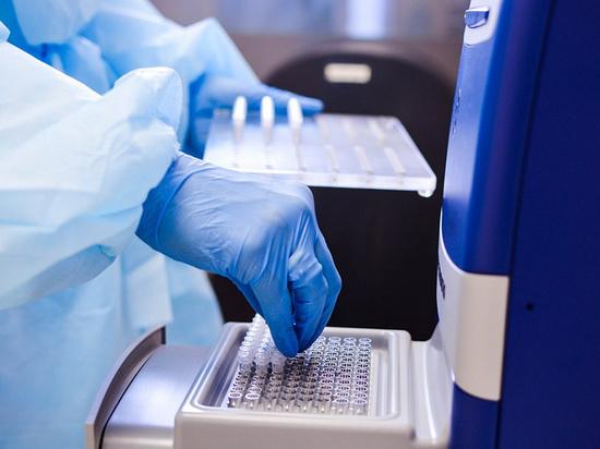 На Кубани заразились коронавирусом 184 человека, в Адыгее – 77 человек за сутки