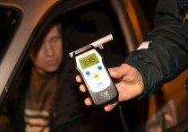 На дорогах Хакасии за сутки поймали 14 пьяных водителей