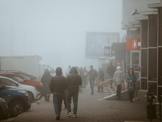 В Волгоград возвращаются снег с дождем и оттепель до +3 градусов