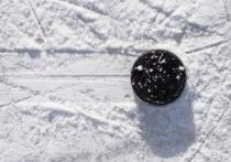 Тверской хоккеист Илья Ковальчук отметился результативными действиями в матче КХЛ