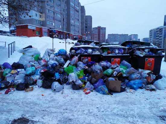 Мусорным коллапсом в Кирове займутся правоохранительные органы