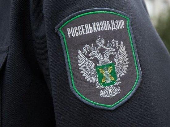 Россельхознадзор рассказал о найденных в Ивановской области незаконных свалках