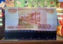 В МВД рассказали какие банкноты стали самыми популярными у фальшивомонетчиков в 2020 году, а также отметили рост преступлений, связанных с незаконным  изготовлением и сбытом фальшивых денег