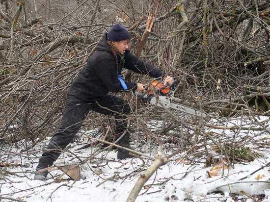 Операцию «Чистый лес» объявили в Железноводске
