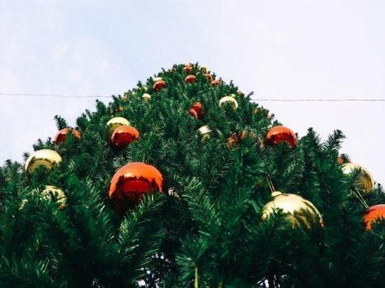Под Рождество в Волгограде выпадет снег