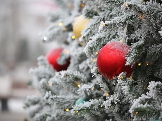 Синоптики рассказали о погоде на Рождество Христово в Волгограде