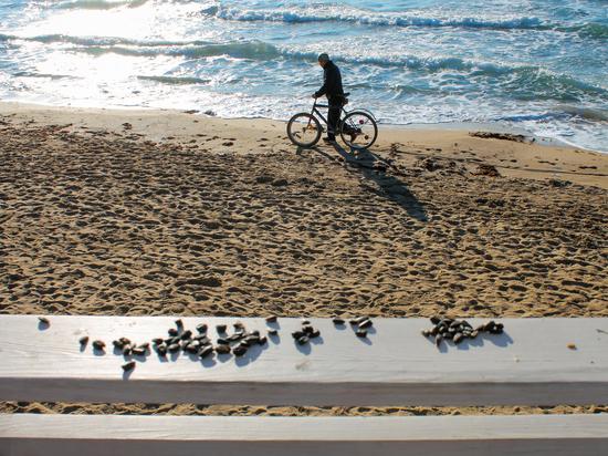 Крымская прогулка: беспечность зимних пляжей Евпатории