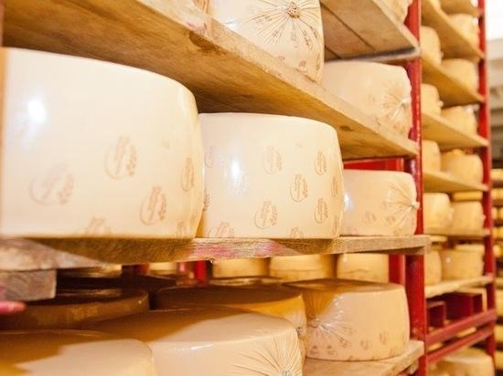 Ученые доказали пользу вина и сыра для пожилых людей