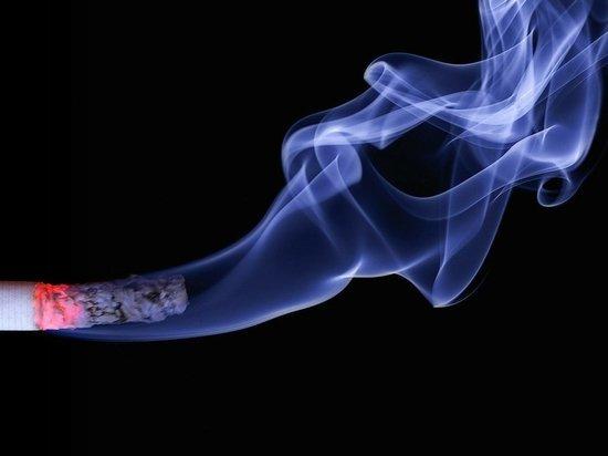 Человек погиб из-за непотушенной сигареты в пожаре под Томском