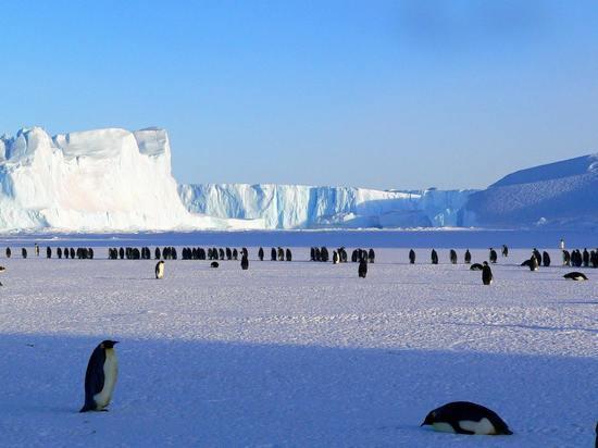 Над Антарктидой закрылась рекордно большая озоновая дыра
