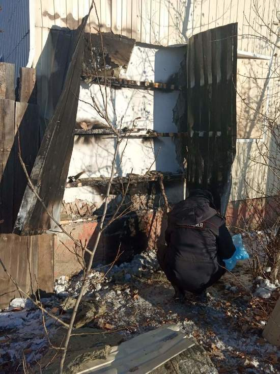 В Улан-Удэ три собаки погибли в подожженном приюте для бездомных животных