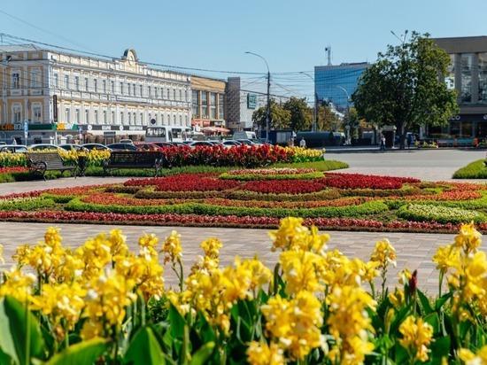 Тысячи деревьев высадили в Ставрополе за год