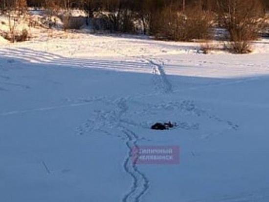 В Челябинске на льду реки Миасс обнаружен труп мужчины