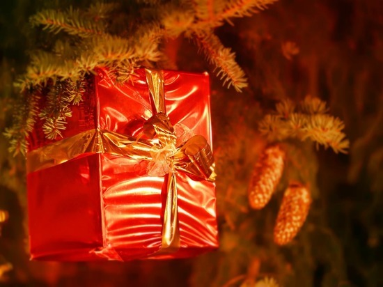 Как грамотно использовать ненужные новогодние подарки: советы томского эколога