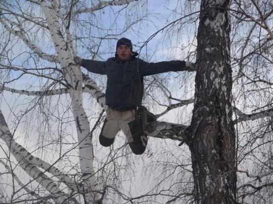 Омский «тик-токер на берёзе» вывихнул руку при прыжке с дерева