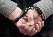Педофила, на протяжении полугода насиловавшего двух девочек, задержали столичные сыщики