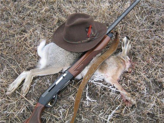 В Калмыкии охота на пушного зверя, за исключением зайца, продолжается