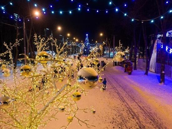 Новогодний Лесопарк Рязани показали с высоты