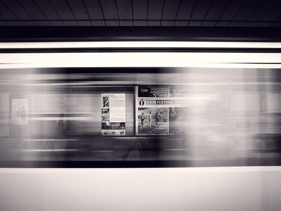 На синей ветке московского метрополитена восстановили движение поездов
