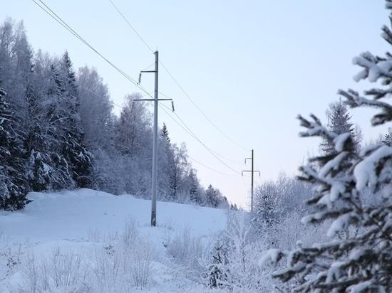 Кировэнерго призывает охотников быть осторожными вблизи линий электропередачи