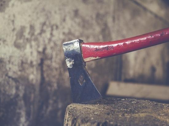 В новогоднюю ночь под Рязанью мужчина убил собутыльника ударом топора по голове