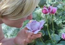 Запахов не чувствуют до 90% людей, имеющих это заболевание