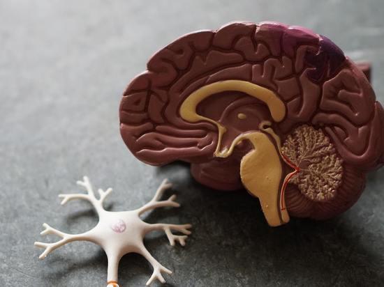 Потеря обоняния может быть предвестником болезни Паркинсона