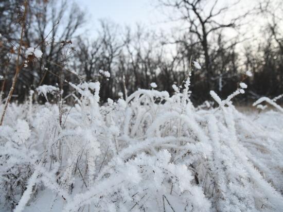 12 января Волгоградскую область ждет снег и похолодание до -14°